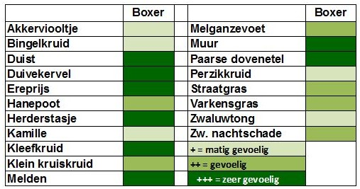 Werkingsspectrum Boxer in wortelen