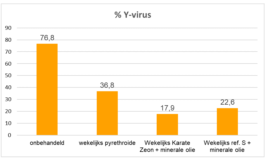Proef % y virus in pootaardappelen