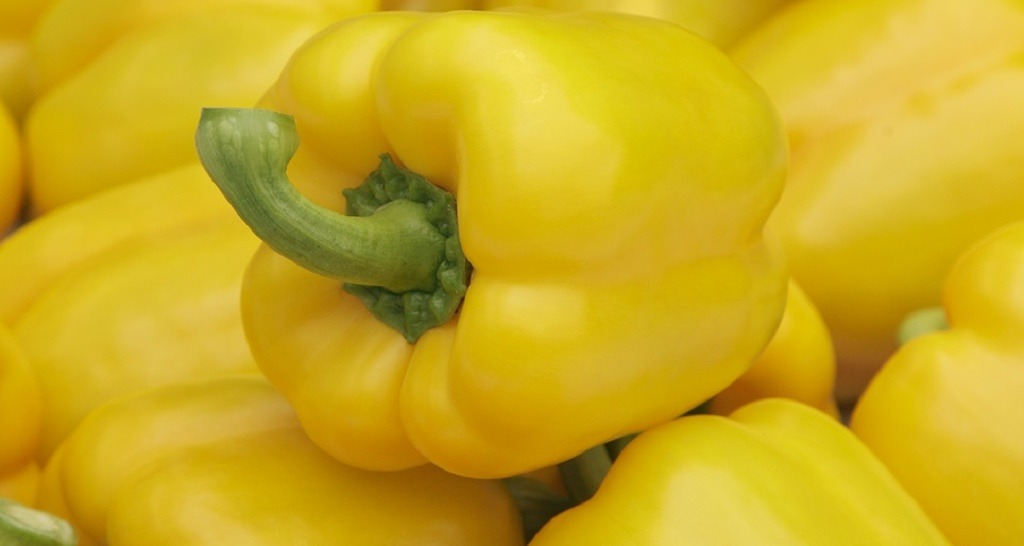 New yellow pepper